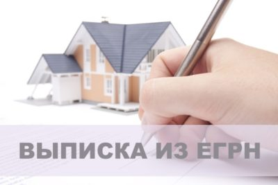 Выписка егрн на квартиру в налоговой